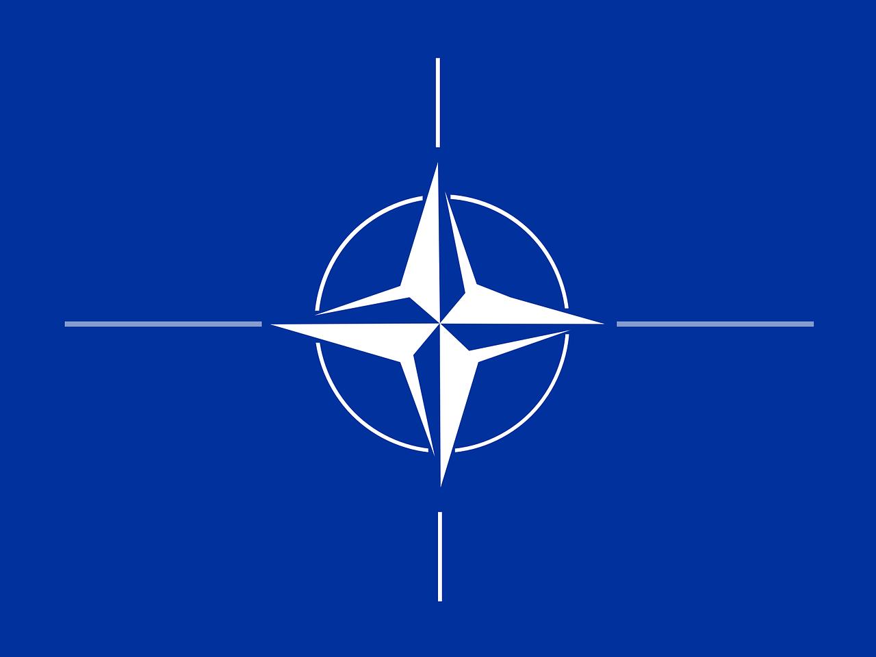 Defender Europe 2020: sera-t-il quand même réalisé?
